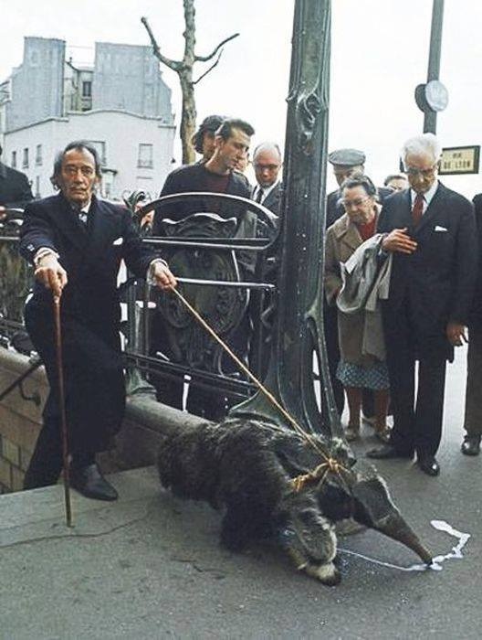 Salvador Dali with his pet anteater, Paris, 1969..jpg