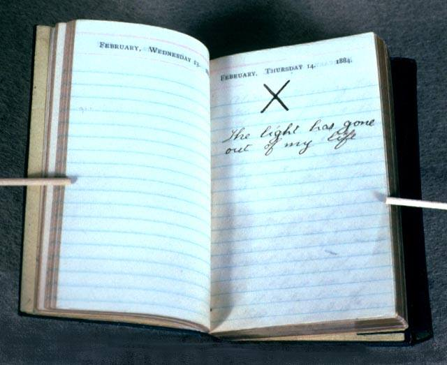 Teddy Roosevelt diary entry